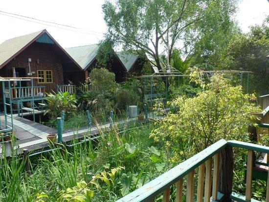 Sam's Jungle Resort Guest House : Vue sur les bungalows