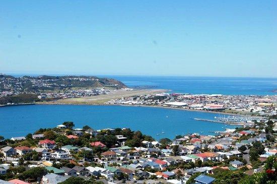 Flat Earth New Zealand Experiences