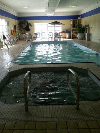 Hampton Inn by Hilton Niagara Falls-North Of The Falls: Pool and hottub