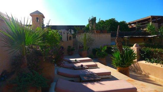 Dar Mouassine : Rooftop