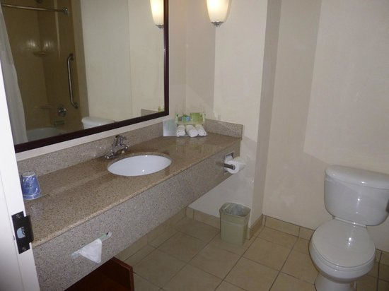 Holiday Inn Express & Suites Port Richey: Bathroom