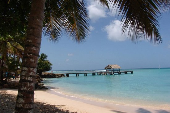 Coco Reef Tobago : Pigeon Point - only a short hike away