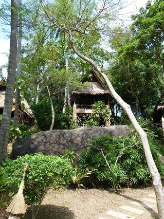 """Koh Tao Cabana : Vue de la """"cabane"""""""