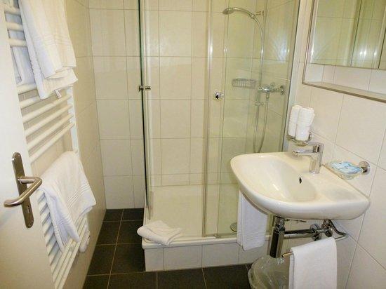 Hotel Kreuz: powerful shower