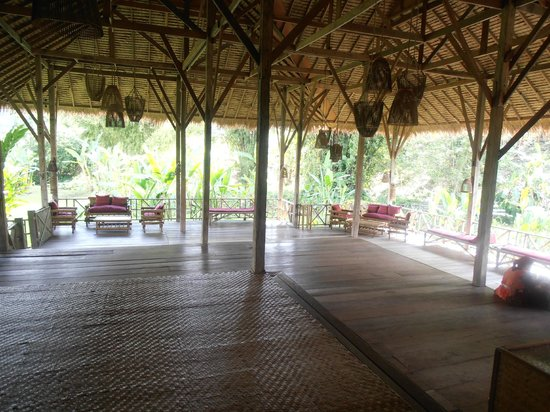 Lisu Lodge: la terrasse du lodge