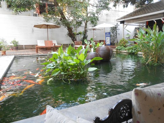 Feung Nakorn Balcony Rooms & Cafe: Fish pond by the reception