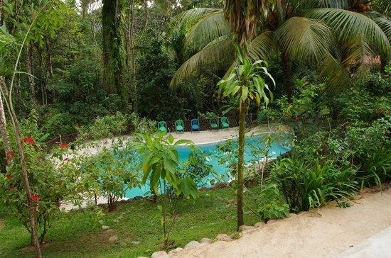 Rio Santiago Nature Resort: POOL