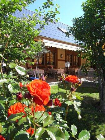 Muhledorf, Schweiz: Lauschiger Ort in mitten eines Bauerndorfes
