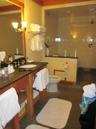 Trapp Family Lodge: One of the Bathrooms