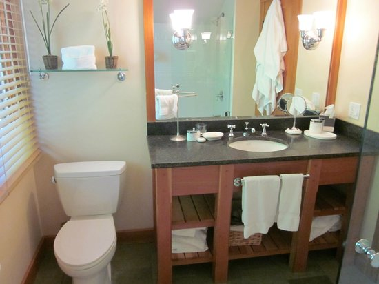 Trapp Family Lodge : One of the Bathrooms