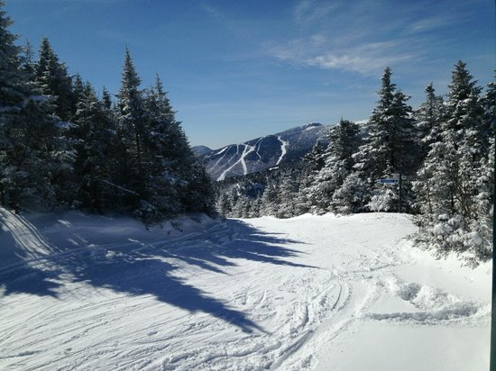 Smugglers' Notch Resort: Drifter Trail - Love the Snow-Covered Trees