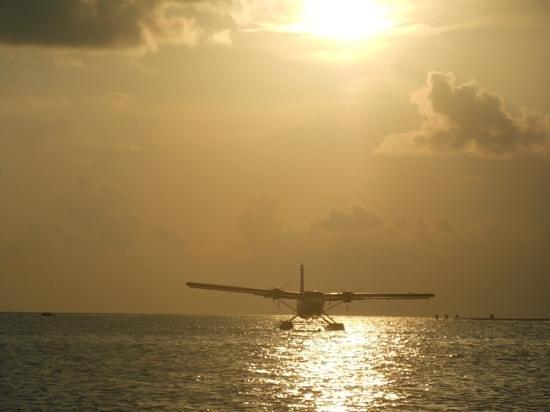 Kuredu Island Resort & Spa : seaplane at sunset