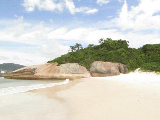 Campeche island: Playa campeche 4