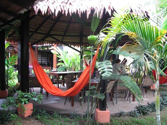 Hotel Amazon Bed & Breakfast : Comedor del hotel