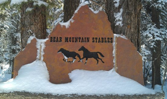 Conifer, CO: Bear Mountain Stables, you have arrived!!