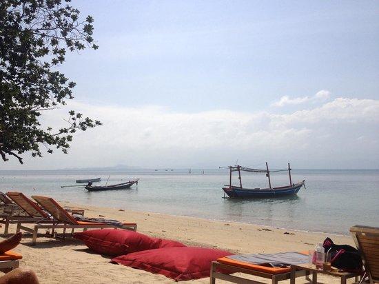 The COAST Resort - Koh Phangan : Beach