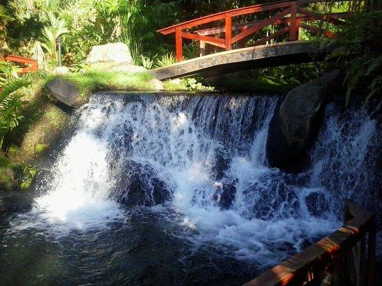 Tabacon Hot Springs: aguas termales