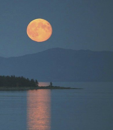 Willow Guest House: Full Moon Over Baynes Sound