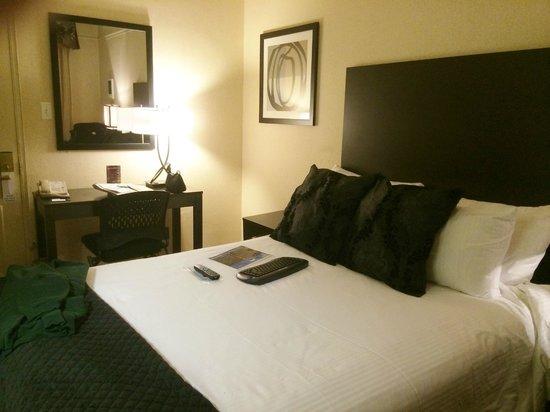 City Suites Hotel: Queen Bed Room