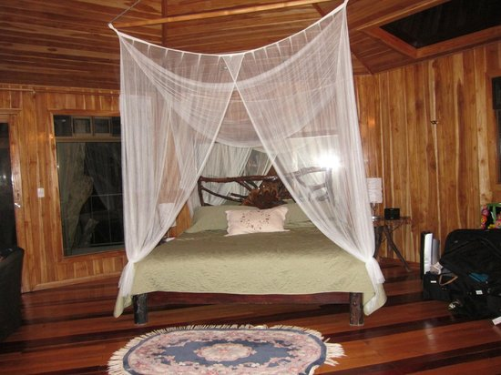 Hidden Canopy Treehouses Boutique Hotel : Glade