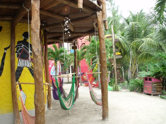 Tribu Hostel : tribu hostal