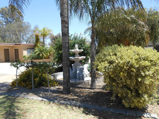 Acacia Ridge Motor Inn : Fountain