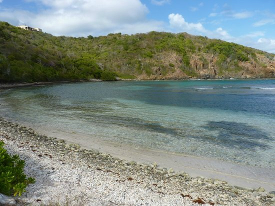 Virgin Islands Campground: Limestone Beach - a 2 min. walk from the campground!