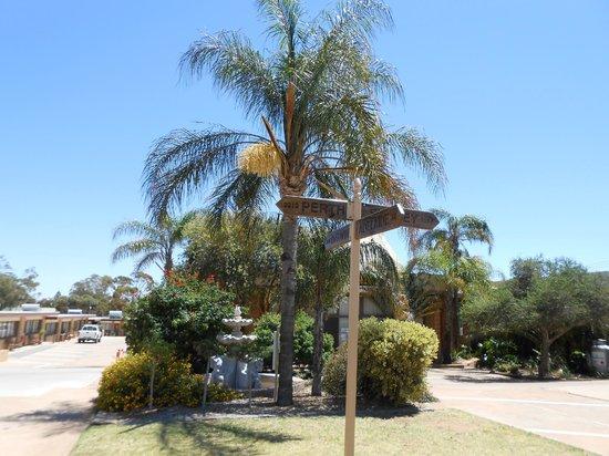 Acacia Ridge Motor Inn : Gardens