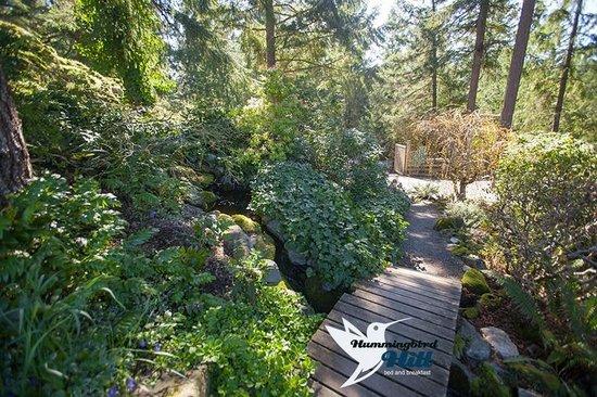 Hummingbird Hill Bed & Breakfast : Beautiful Garden Walkway to The Japanese Teahouse