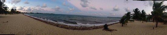 Seaspray Hotel : The beach
