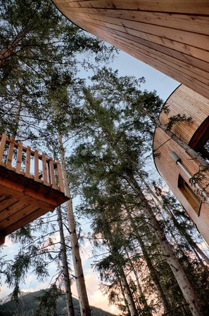 Naturhotel Waldklause: It's kind of in the forest