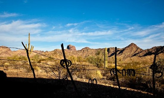 Castle Dome Mines Museum & Ghost Town : views