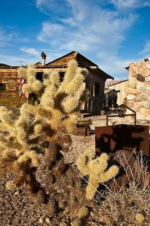 Castle Dome Mines Museum & Ghost Town : cacti & old mining