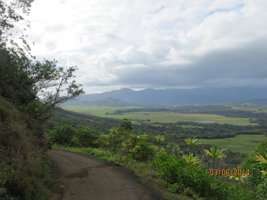 Kipu Ranch Adventures: We started at the tall trees in the valley