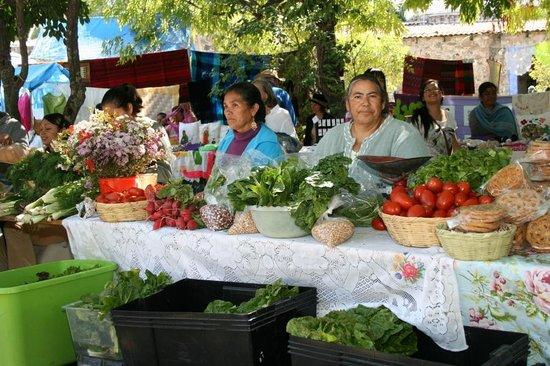 Tosma Mercado De Productores