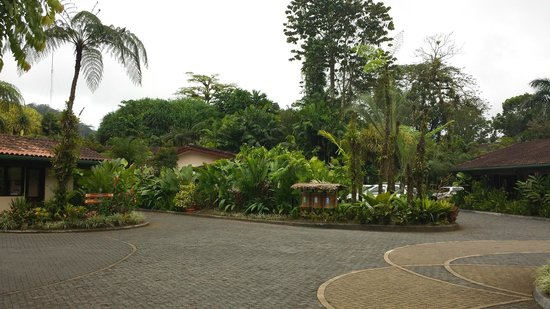 Tabacon Thermal Resort & Spa: Reception Driveway
