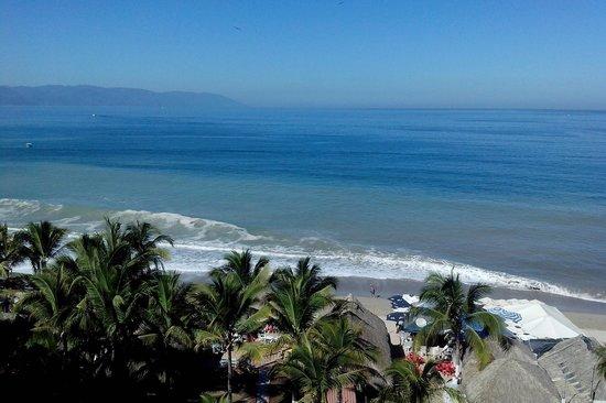 Gaviota Vallarta: Vista hermosa desde la habitacion