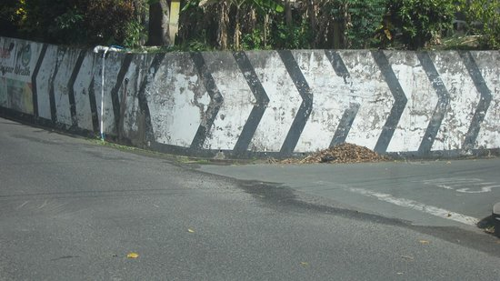 Arnos Vale Reef : Turn Right at the Cement Wall Painted White with Black Stripes