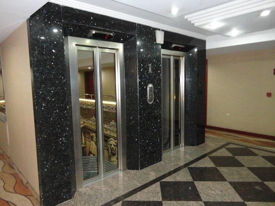 Hotel Vicenza: Elevadores