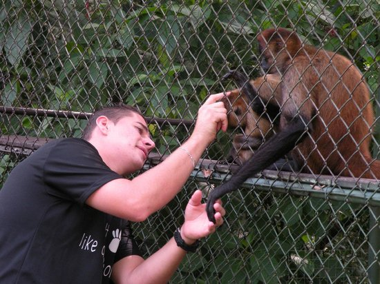 Proyecto Asis: Carlos interacting with some of the monkeys