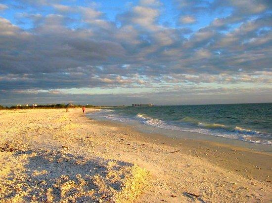 Fort Myers Beach, FL: Wonderful Beach for Walking On.