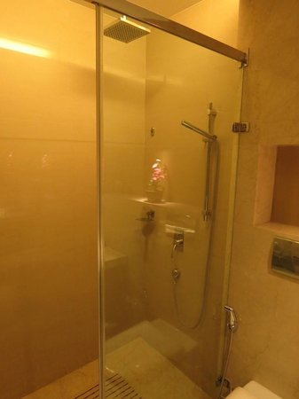 Hotel Florence : Shower