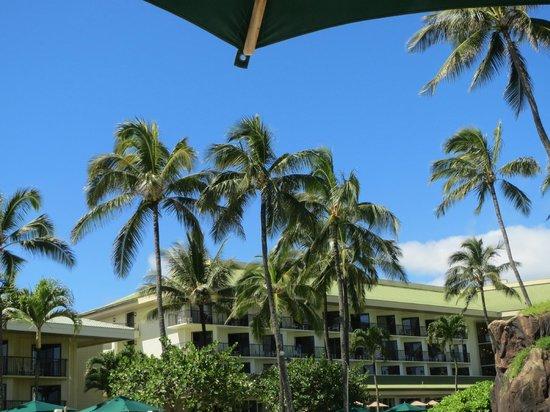Kauai Beach Resort : View from the pool area