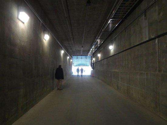 Lambeau Field: The Packer's Player's Tunnel