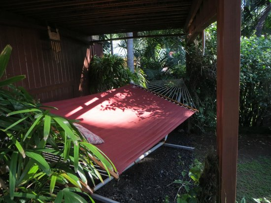Bali House and Bali Cottages: Hammock