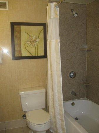 Hilton Garden Inn Anderson : Bathroom
