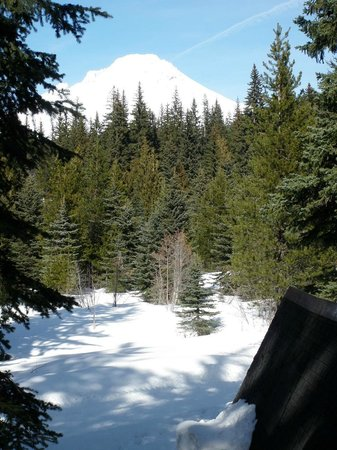 Summit Meadow Cabins: View of Mt Hood out the living room window