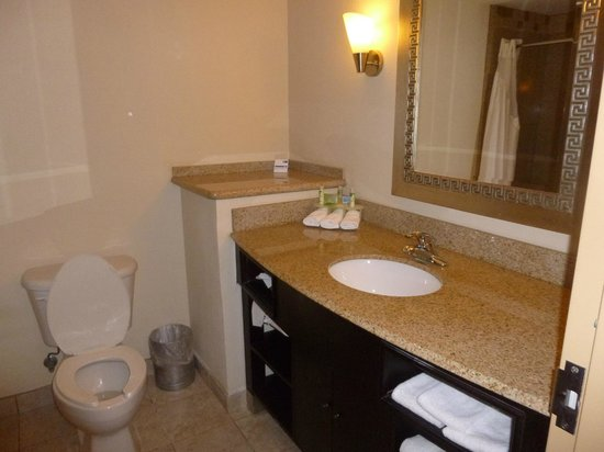 Holiday Inn Express Hotel & Suites Brooksville-I-75: Bathroom