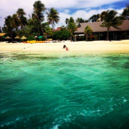 Plantation Island Resort: Beautiful water