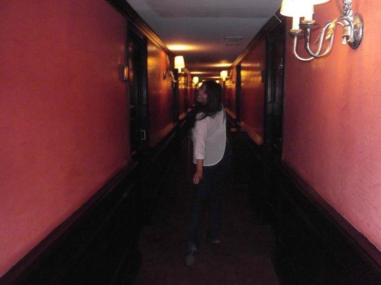 Hotel Geneve Ciudad de Mexico : Pasillos